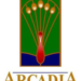 Adult Recess at Arcadia Public Library