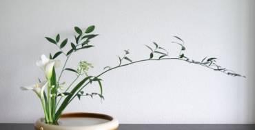 Ikebana at the Arboretum