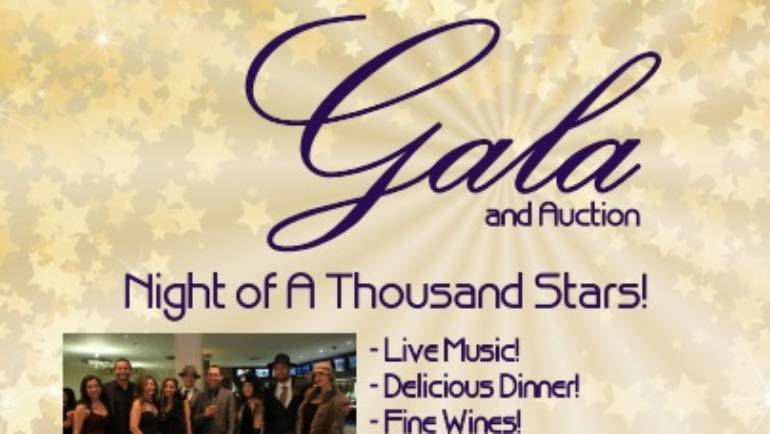 YMCA 9th annual Gala and Auction
