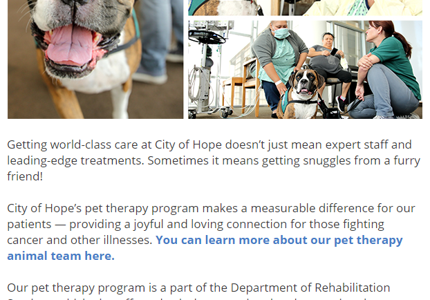 Dogs make a difference at City of Hope